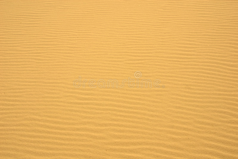 Download Golden Sand Ripples stock photo. Image of parched, sunlight - 5567046