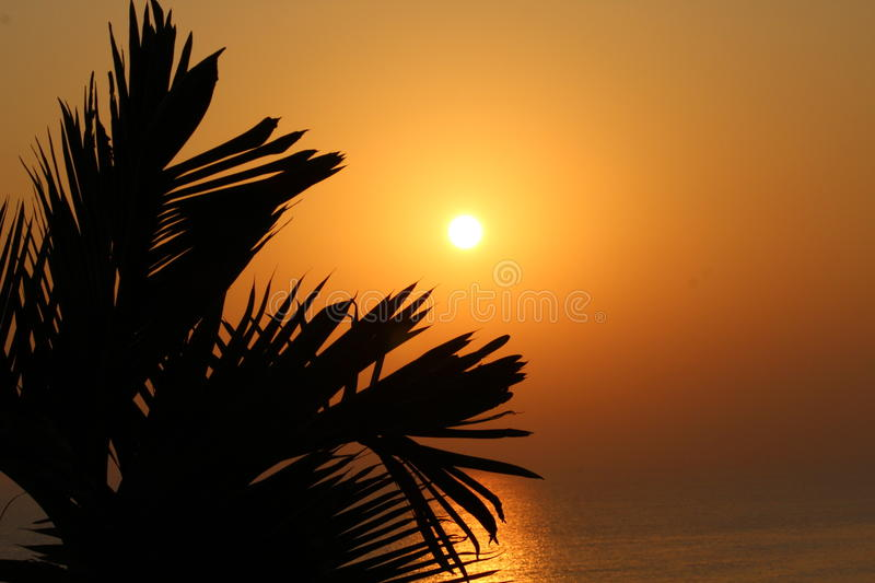 Golden sea in the early morning royalty free stock photo