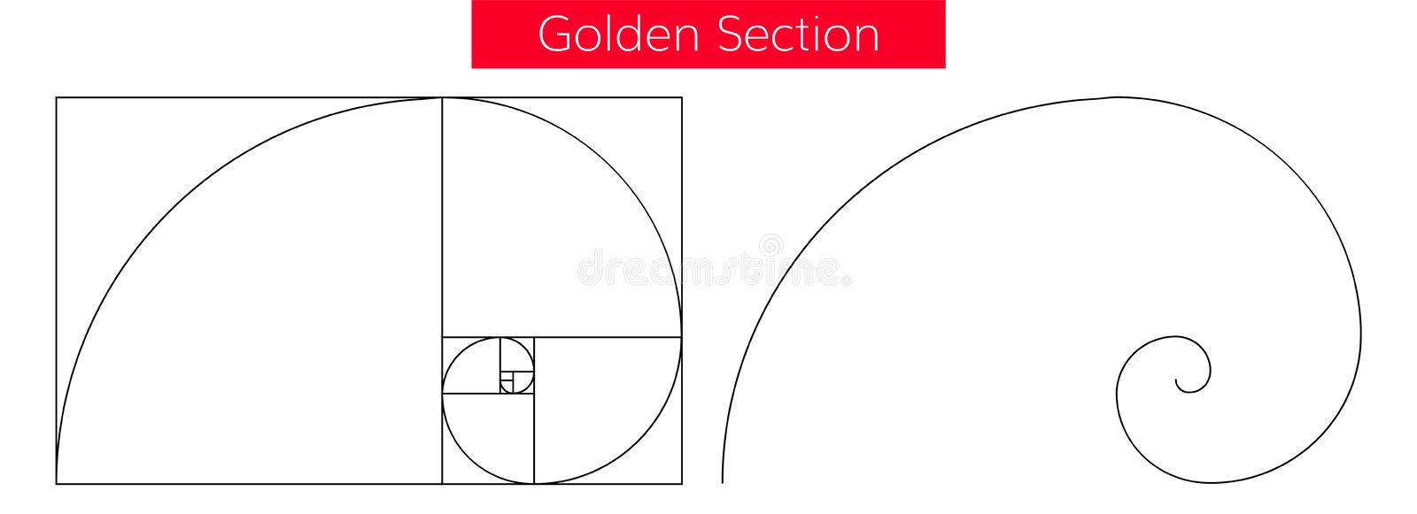 Golden section vector royalty free illustration