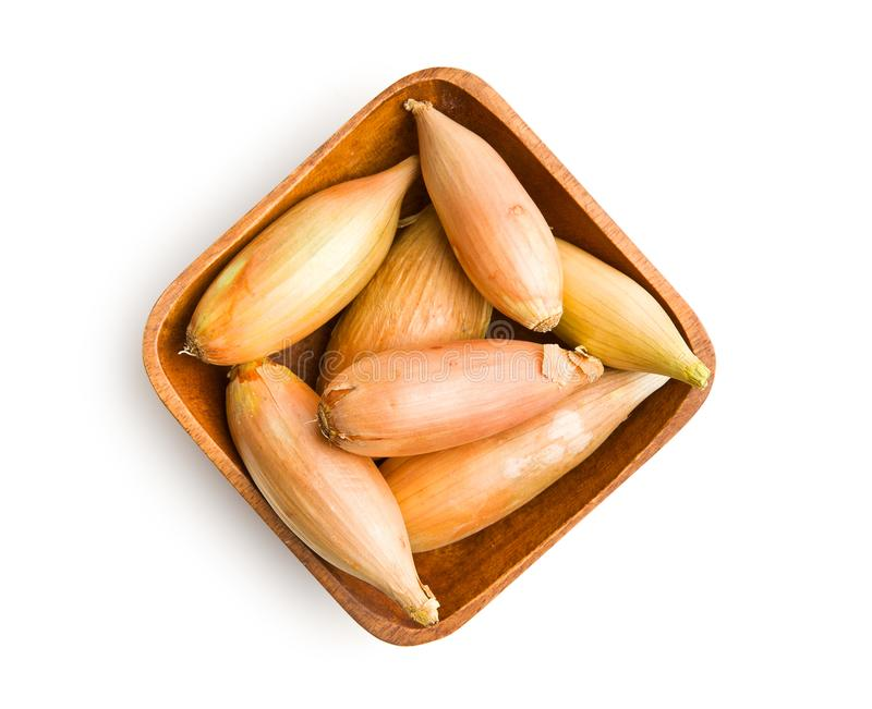 The golden shallot onion stock photography
