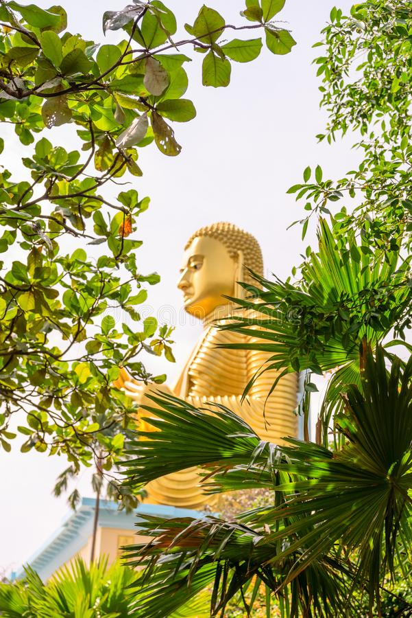 Golden sitting Buddha statue in green tropical trees leaves frame. With selective focus on the greens on front stock images