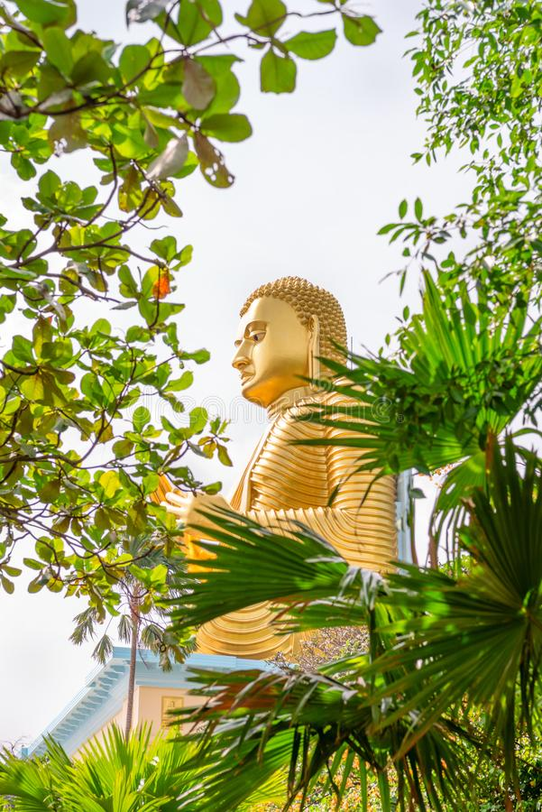 Golden sitting Buddha statue in green tropical trees leaves frame. With selective focus on the face stock images