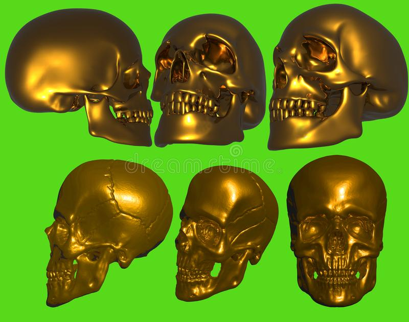 Golden skull statue royalty free stock photography