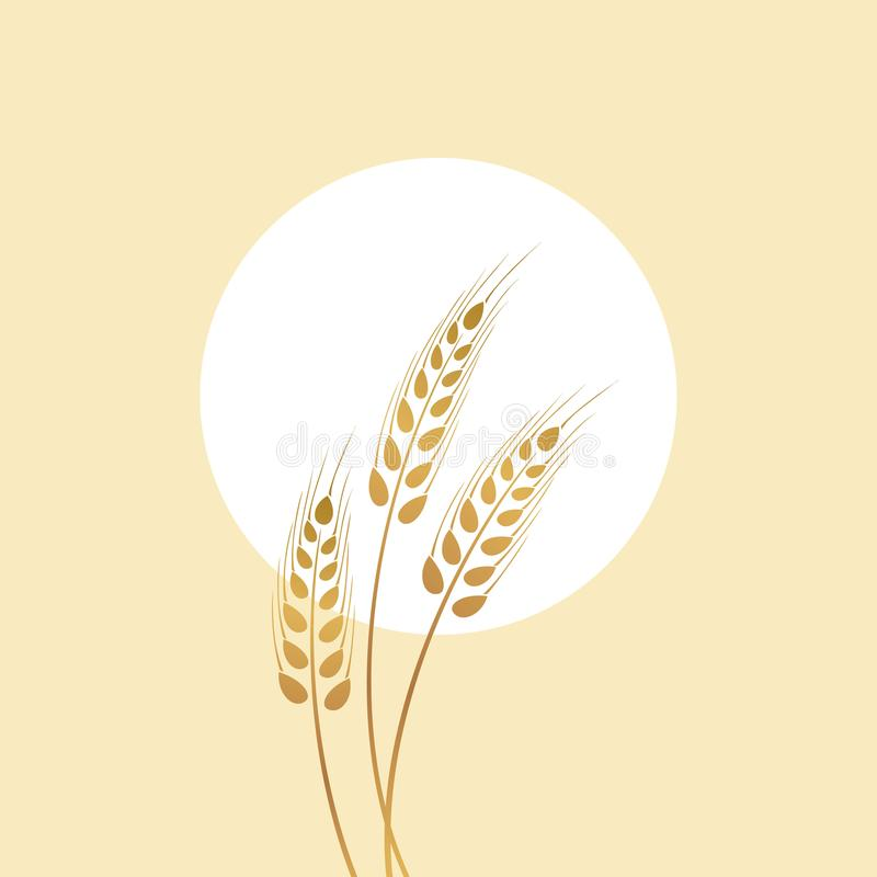 Golden spikelet and sun illustration. Ripe ears of corn in a field. Bakery illustration stock illustration