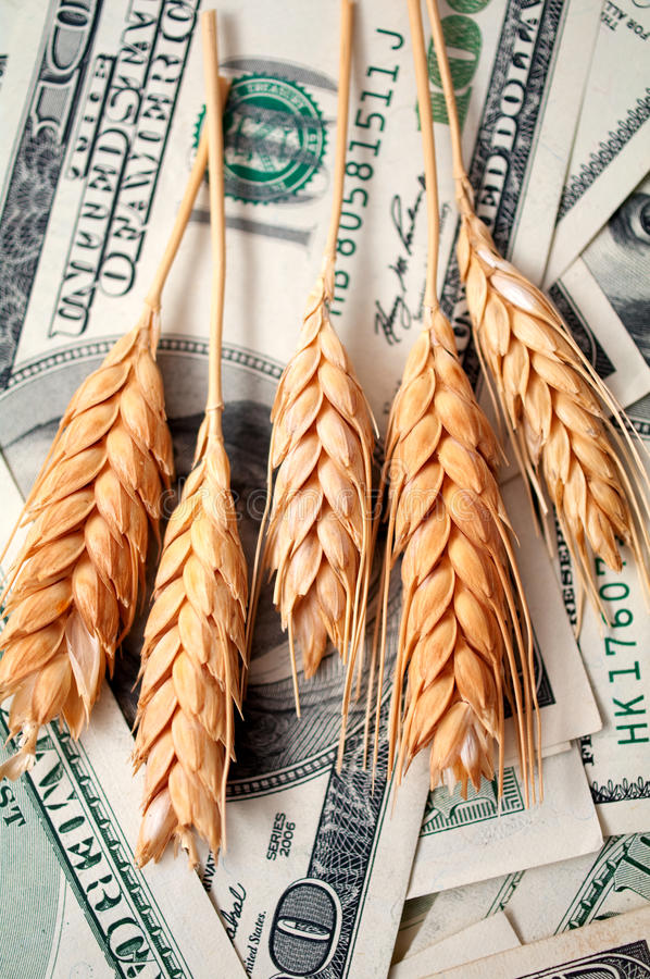 Free Golden Spikes With Dollar Bills Stock Image - 21775931