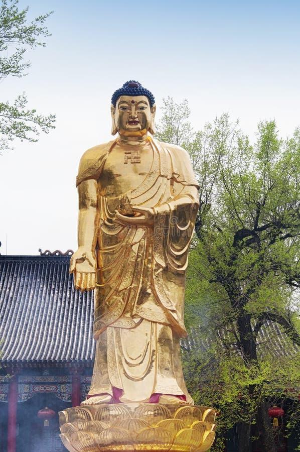 Golden standing buddha jile tempel harbin china stock fotografie