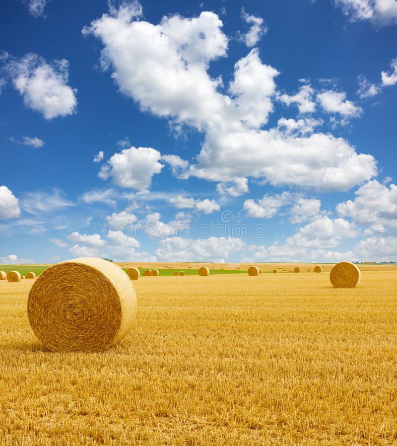 Free Golden Straw Bales Of Hay In The Stubble Field, Agricultural Field Under A Blue Sky With Clouds Royalty Free Stock Photo - 160119445