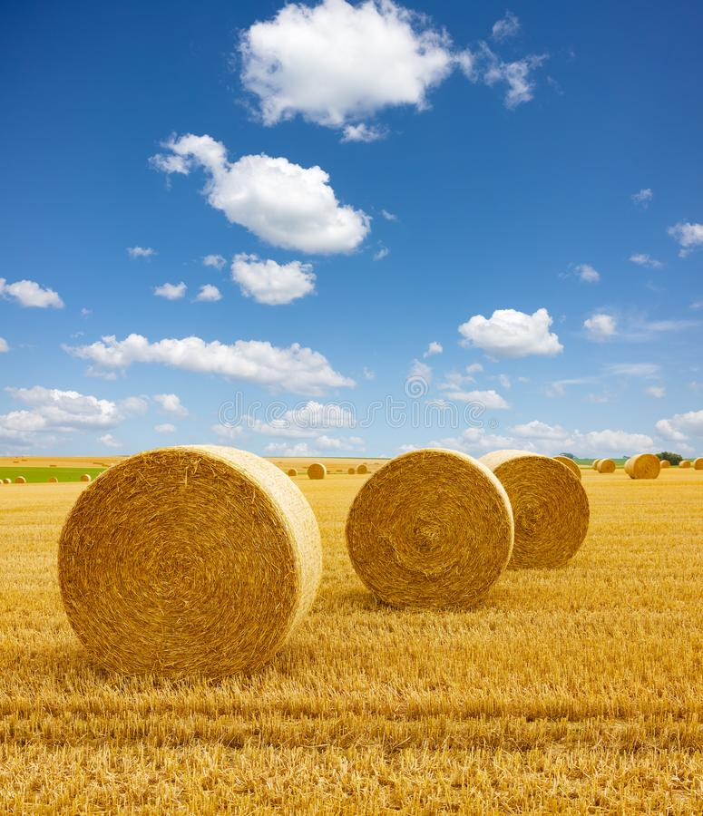 Free Golden Straw Bales Of Hay In The Stubble Field, Agricultural Field Under A Blue Sky With Clouds Stock Photography - 160427032