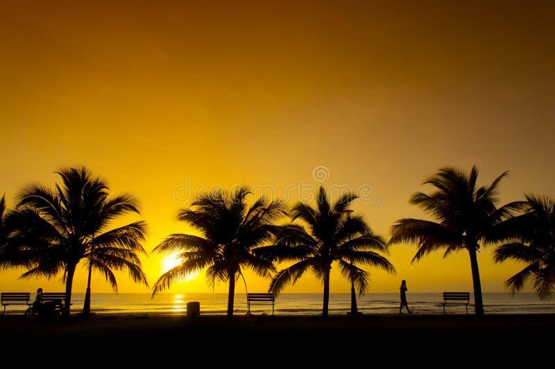 Download Golden sunrise stock photo. Image of horizon, evening - 27359744