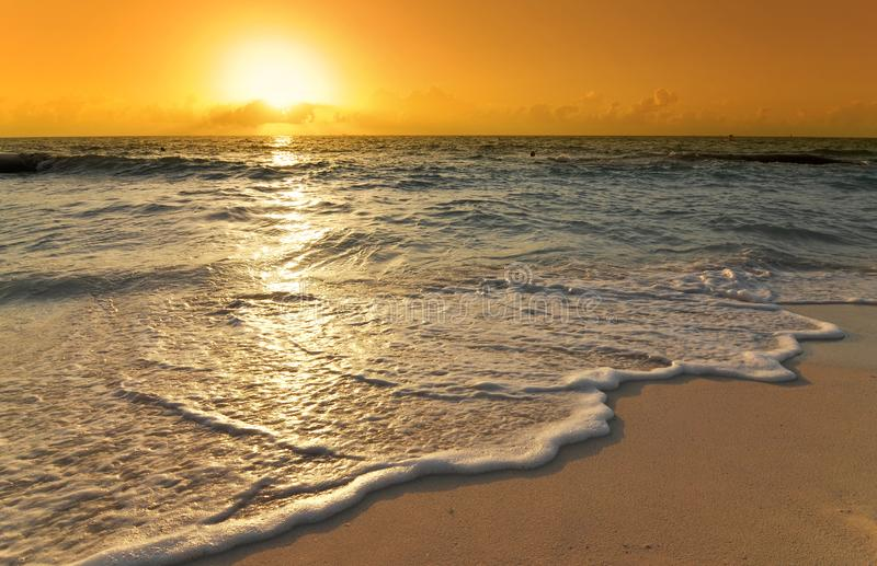 Golden sunrise with wave over caribbean beach royalty free stock image