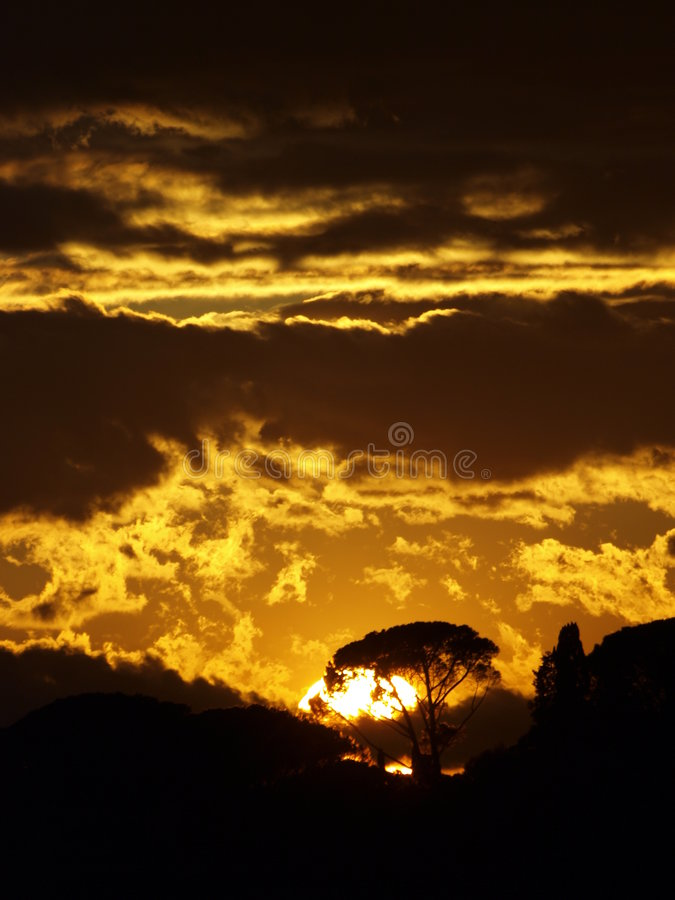 Golden Sunset 2 Royalty Free Stock Images