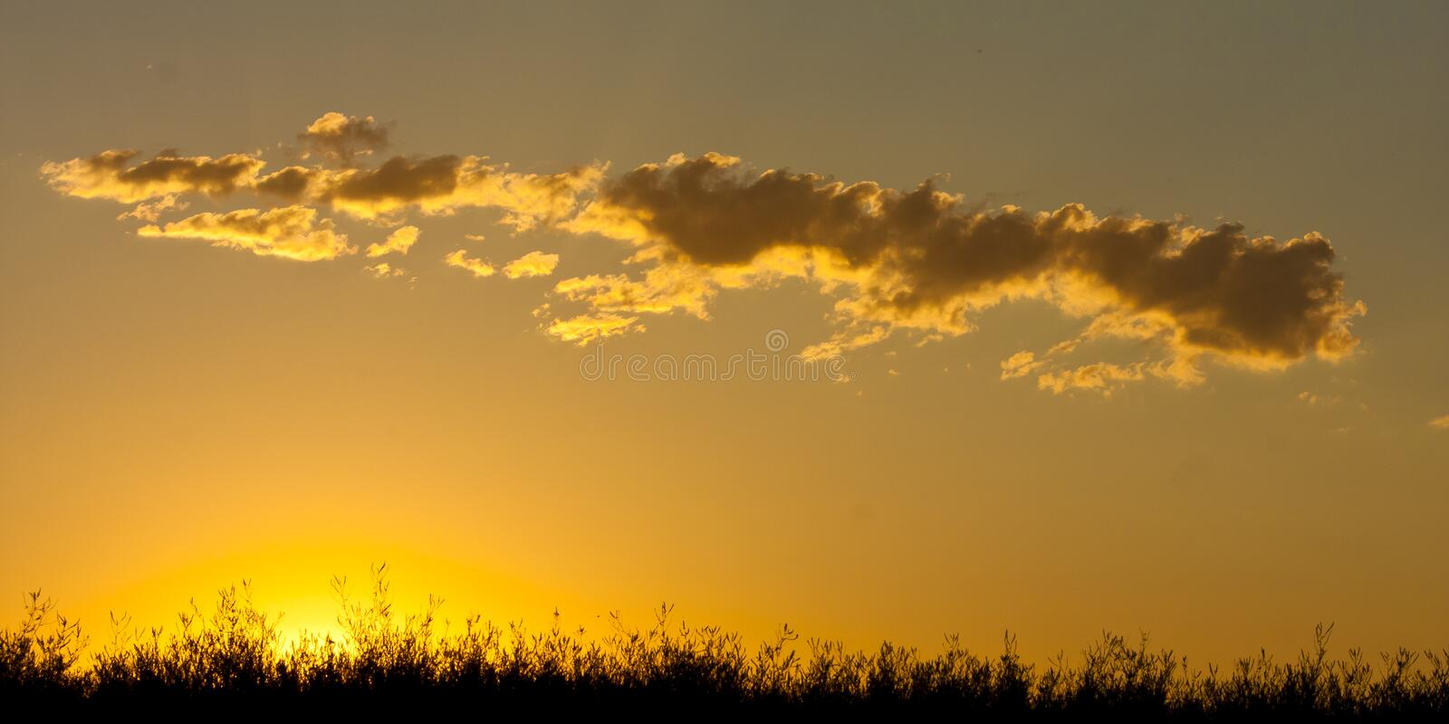Golden Sunset. A golden red and orange sunset over the flat prairie landscape stock photos