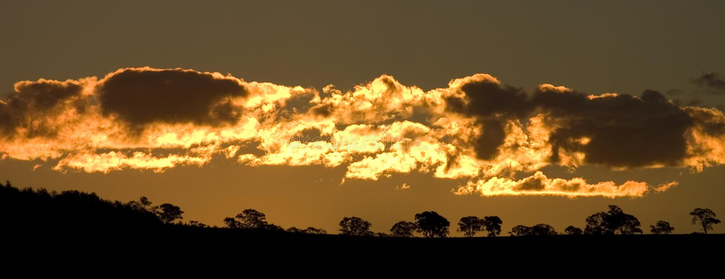 Golden Sunset royalty free stock photos