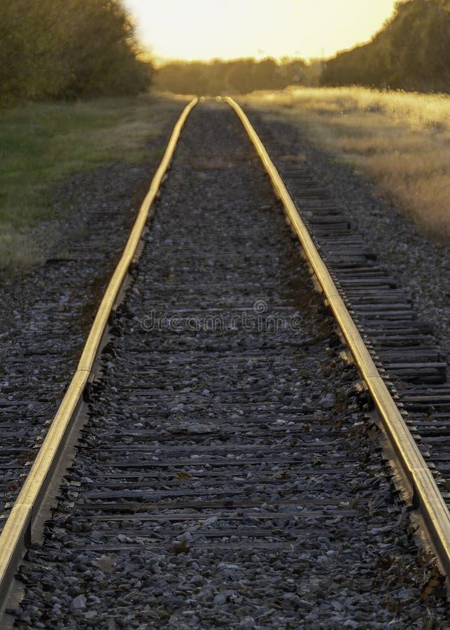 Golden Sunset and Rural Railroad Tracks Vanishing in Distance stock fotografie