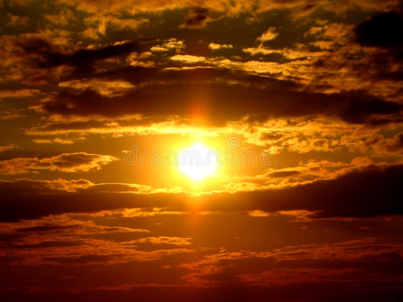 Golden Sunset in the sky royalty free stock photo
