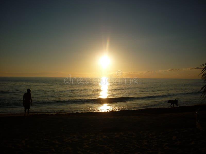 Golden Sunset Treasure Beach royalty free stock images