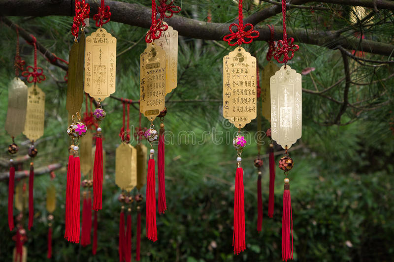 Golden Taoist prayer charms hanging from a tree. Closeup of golden Taoist prayer charms (prayers in physical form) hanging from a tree royalty free stock photos