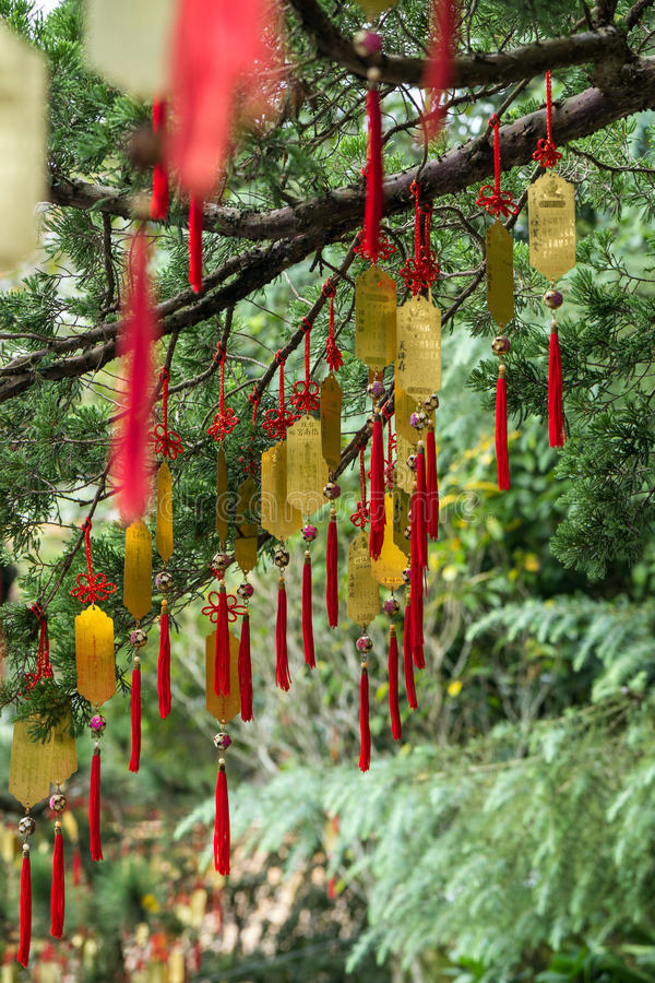 Golden Taoist prayer charms hanging from a tree. Many golden Taoist prayer charms (prayers in physical form) hanging from a tree stock photos