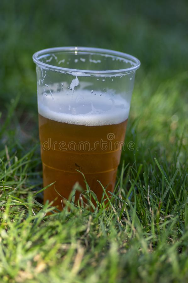 Golden tasty alcoholic beer in plastic crucible in green lawn grass leaves on the ground in sunlight, environmentally unfriendly stock photos