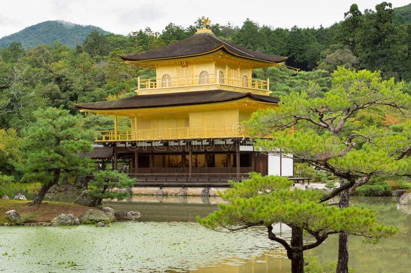 Golden temple of Kinkaku-ji. Kyoto, Japan - September 19, 2016: The golden temple of Kinkaku-ji stands behind pond and in front of jungle trees royalty free stock image