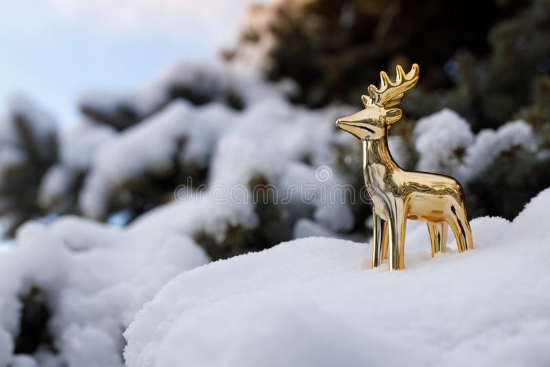 Golden toy deer stands on a snowy branch of evergreen pine on background blue sky.  royalty free stock photo