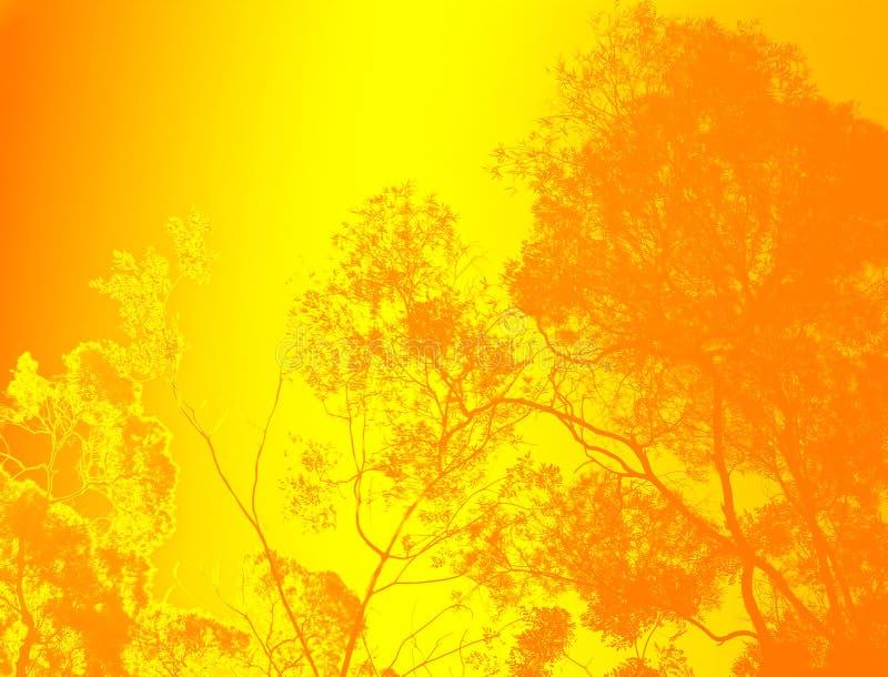 Golden trees. Illustrations of trees in autumn vector illustration