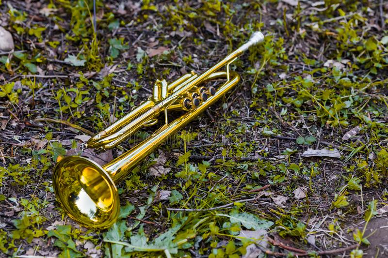 Golden trumpet placed on the grass after the concert stock photo
