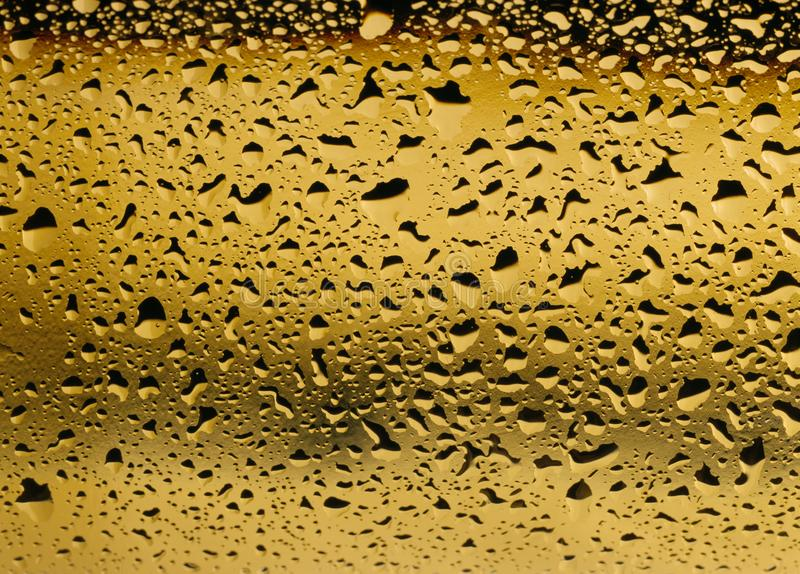 Golden view of a close up of condensation on a white wine bottle royalty free stock images