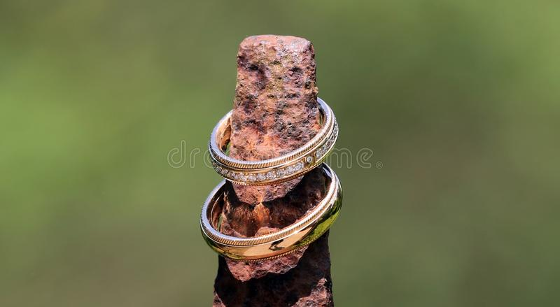 Golden wedding rings with brilliants shine stylishly arranged in the sunlight stock photos