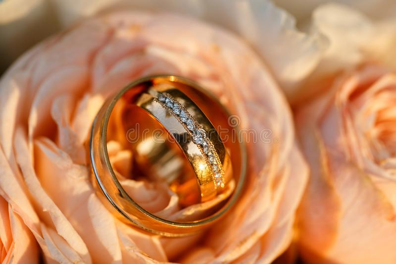 Wedding golden rings with pastel pink rose stock photo