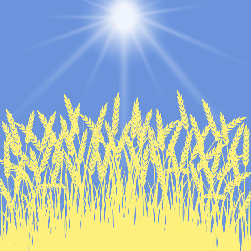 Golden wheat royalty free illustration