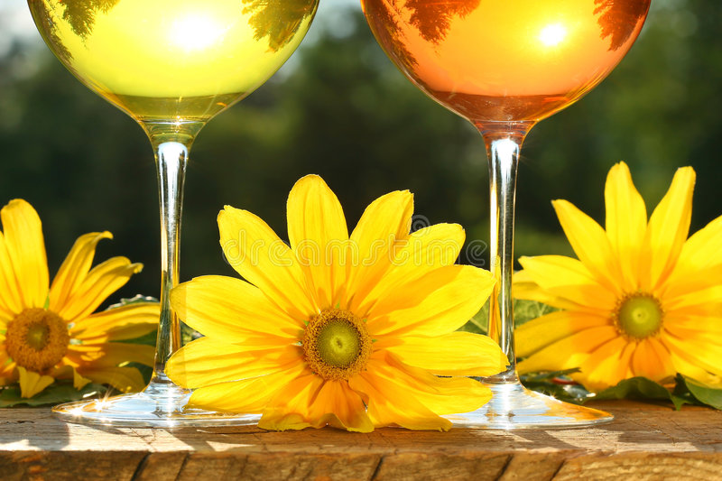 Golden wine in the sun royalty free stock photo