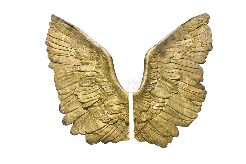 Download Golden wings stock image. Image of independence, feathers - 26403255