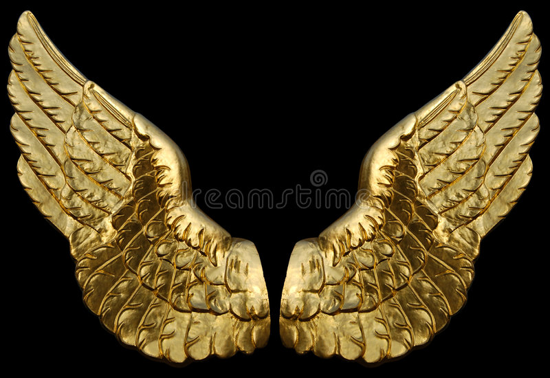 Wing Gold >> Golden Wings Stock Photo Image Of Metal Gold Wing Award 8480988