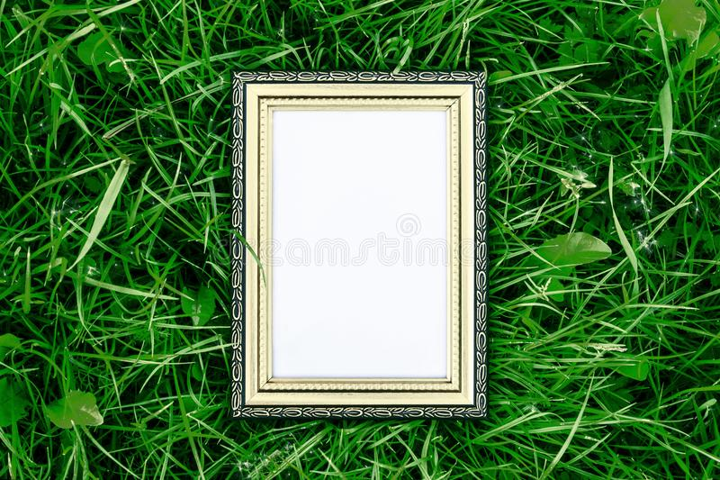 Golden wood frame on green grass background, luxury and nature concept stock images