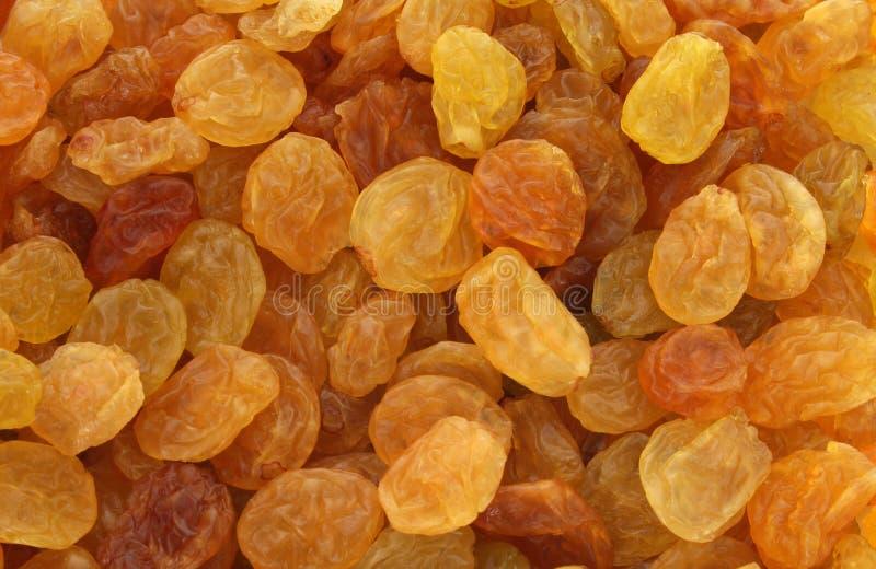 Golden yellow raisins background stock images