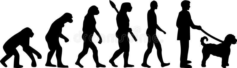 Goldendoodle ewolucja royalty ilustracja