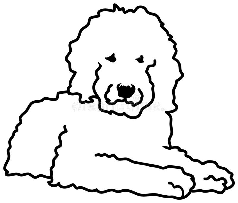 Goldendoodle silhouette white lying. Goldendoodle silhouette in white lying vector illustration
