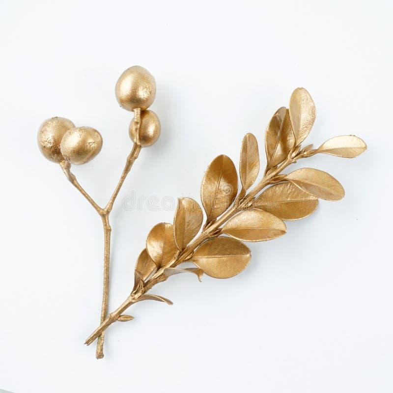 Goldene Blatt- und Fruchtgestaltungselemente Dekorationselemente für Einladung, Hochzeitskarten, Valentinsgrußtag, Grußkarten Get stockfotografie