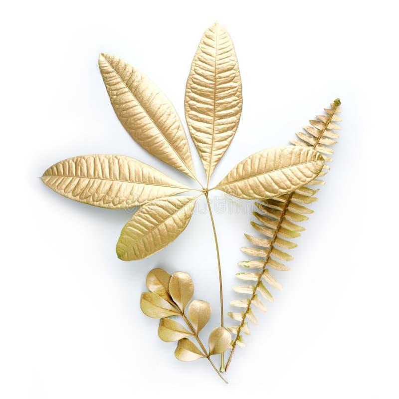 Goldene Blattgestaltungselemente Dekorationselemente für Einladung, Hochzeitskarten, Valentinsgrußtag, Grußkarten Lokalisiert auf lizenzfreie stockbilder