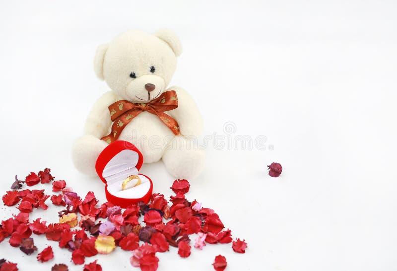 Goldene Eheringe und roter Kasten an den Spielzeugbärntatzen gegen Trockenblumehintergrund lizenzfreie stockfotos
