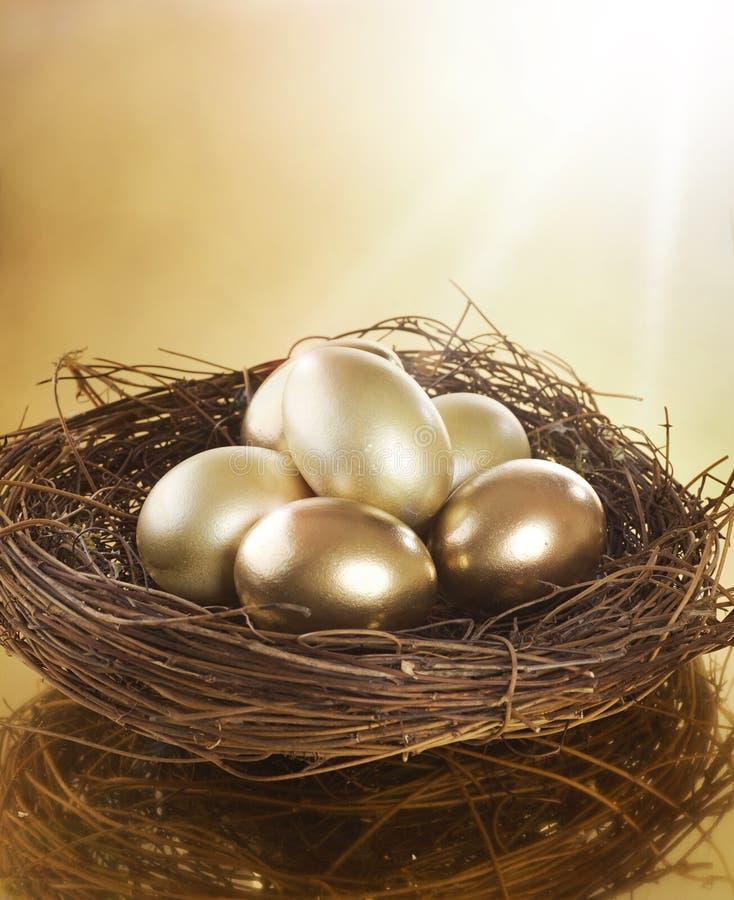Goldene Eier in einem Nest lizenzfreies stockfoto
