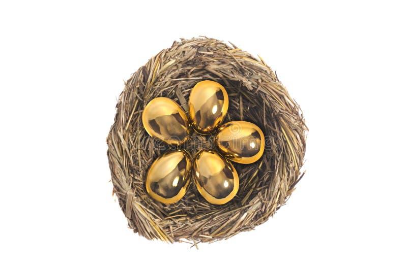 Goldene Eier im Vogelnest auf Weiß lizenzfreie stockfotografie