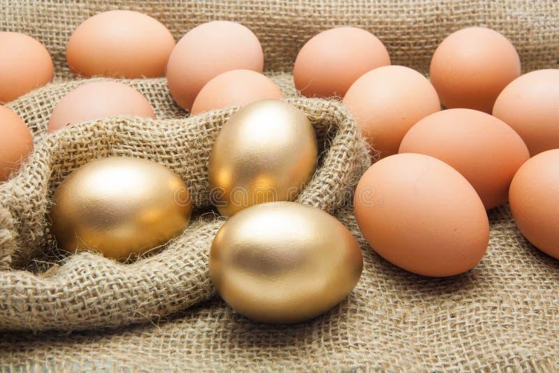 Goldene Eier mit Hühnereien stockfotos