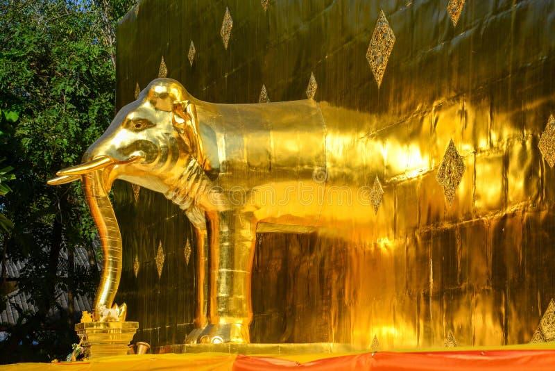 Goldene Elefantstatue in thailändischer Lanna-Art auf Goldmetallplattenhintergrund verzieren an der Basis der goldenen Pagode im  stockfotografie
