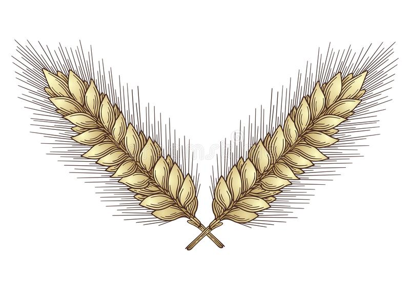 Goldene Ernte stock abbildung