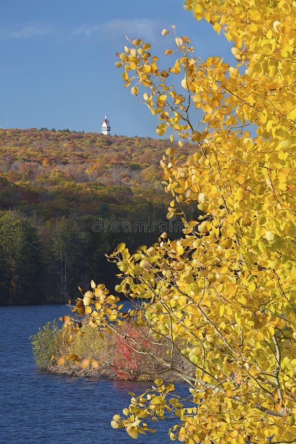 Goldene Espe gestaltet einen Turm an West-Hartford-Reservoir, Connecti lizenzfreie stockbilder