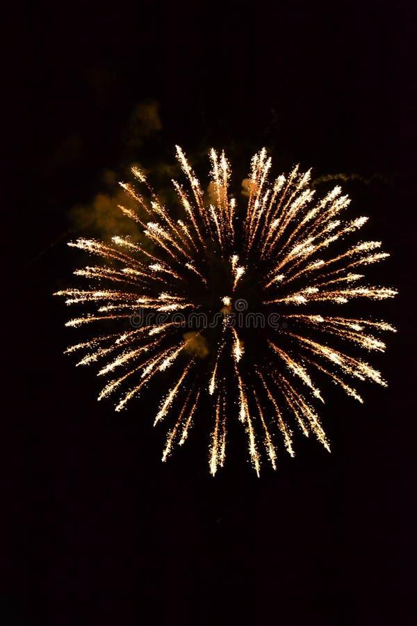 Goldene Feuerwerke lizenzfreie stockfotos