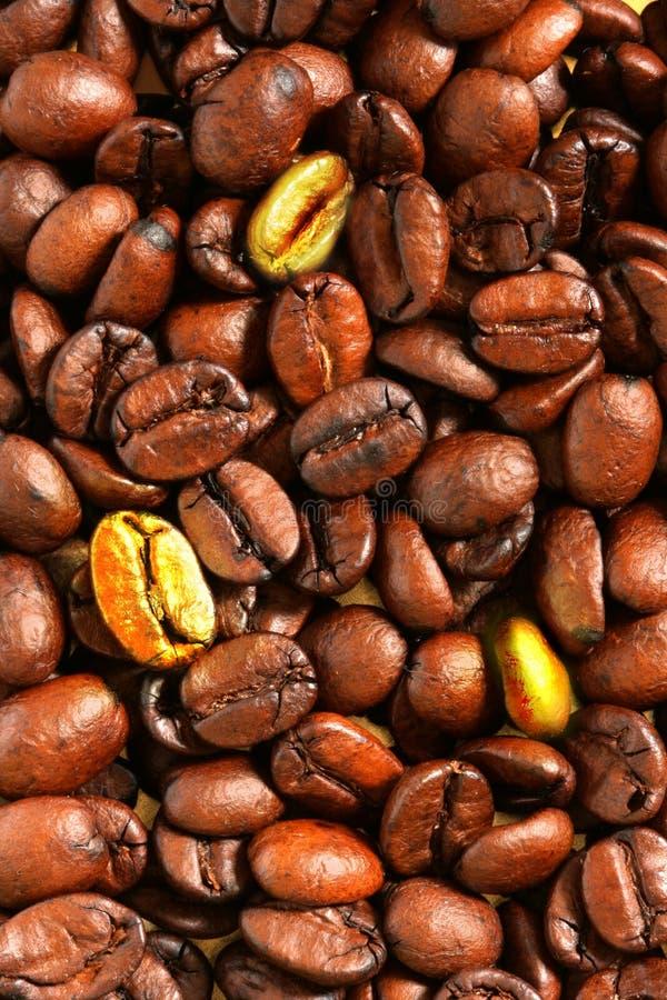 Goldene Kaffeebohnen lizenzfreie stockfotos
