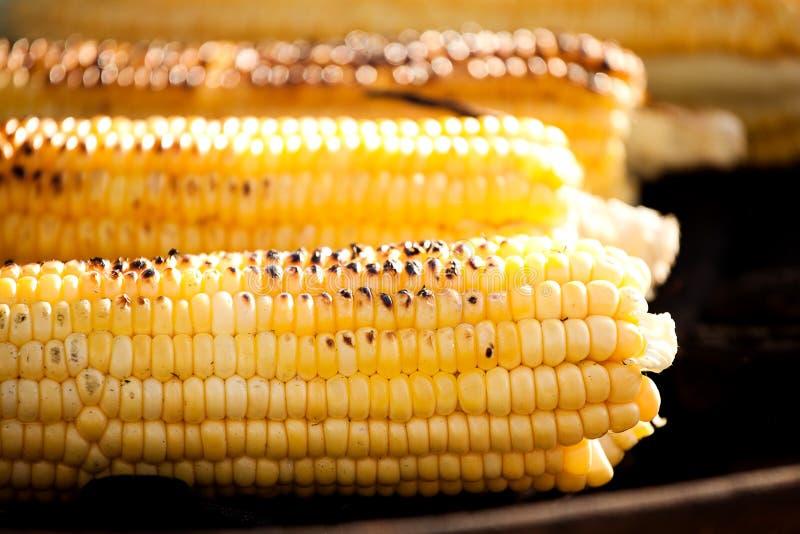 Goldene Maiskolben backten oder grillten auf Holzkohle, draußen lizenzfreies stockbild